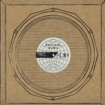 Do The Right Thing / Do The Right Thing (Roots Cut) / Do The Right Thing (Roots Dub) - Radikal Guru Feat Marina P