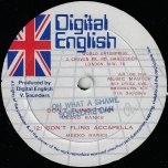Oh What A Shame / Youthman Hustling - Screechie Dan / Knight Rider