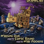 Dub Is The Teacher / Part 2 / Part 3 / Natural Born Dubber / Part 2 / Part 3 - Weeding Dub Meets Coptic Sound And Wise Rockers