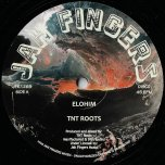 Elohim / Verse II - TNT Roots