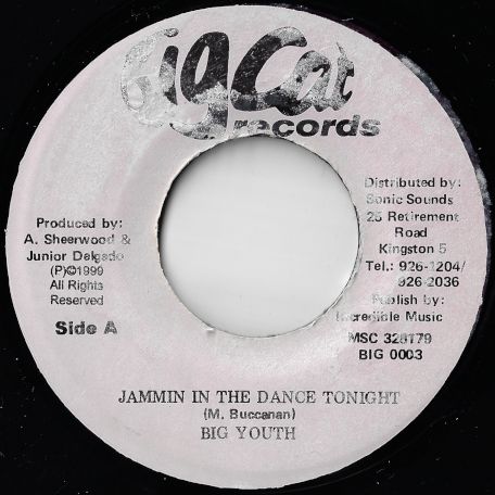 Jammin In The Dance Tonight /  Ver - Big Youth