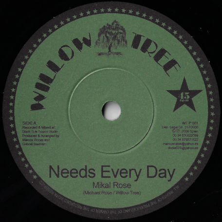 Needs Every Day / Ver - Michael Rose