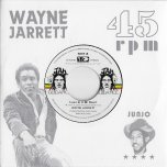 Love In My Heart / Blood On His Lips - Wayne Jarrett / Roots Radics