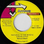 Natural Is The Mystic / Tonight Ver - Natural Black / Computer Paul