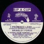 Promised land / Horns From Asmara / Troddin To The Promised Land / Dub At Zion Gates - Brinsley Forde / Matic Horns And The Sip A Cup All Roots