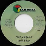 Take A Miracle / Fire And Rain Inst - Norrisman