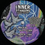 What A Joy / What A Joy Dub / Vibrate On / Vibrate On Dub - Dre Z Meets I David